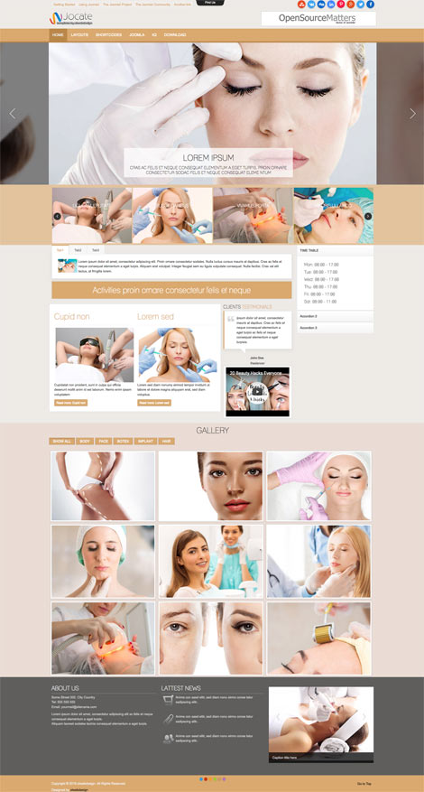 Ol Jocate - Beauty Center Joomla Template