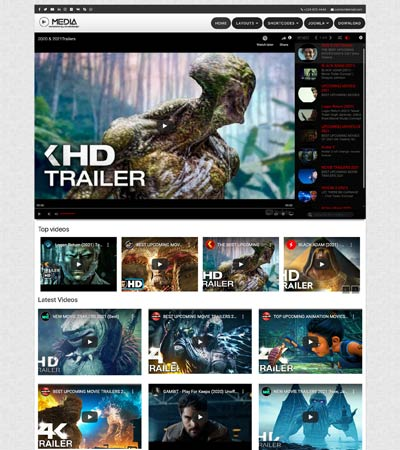 Media Player theme template