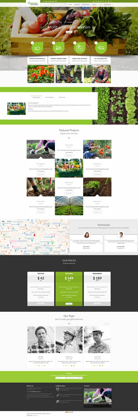 Ol Organic - Organic Products Joomla Template