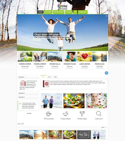 Ostre - Lifestyle theme template