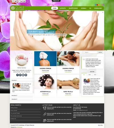 Beauty Salon Spa Joomla Template