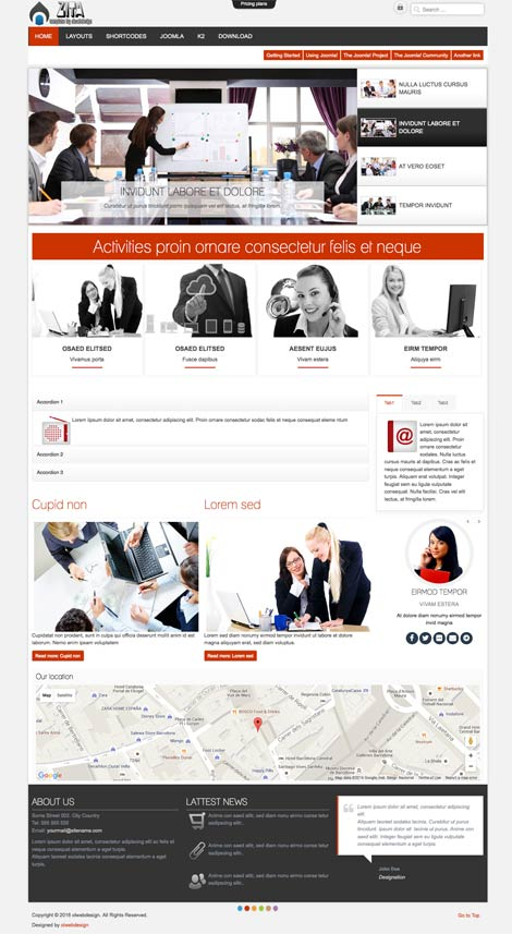 Ol Zita - Joomla Business Agency Template